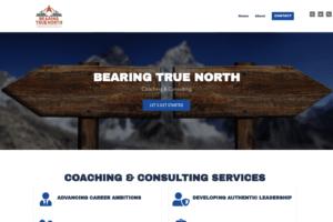 Bearing True North